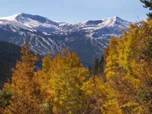 View of the Breckenridge Ski Resort through fall aspen leaves