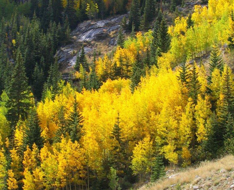 hoosier_autumn-pictures-com
