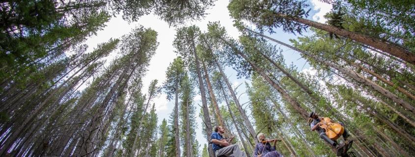 Photo Cred: Breck Create