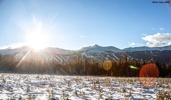 Breckenridge Mount Baldy Road - Top 5 Photo Spots